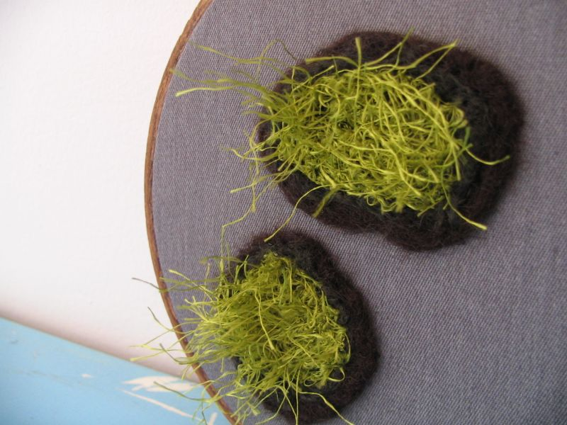 Moss for your Wall 6 (5 inch), 5