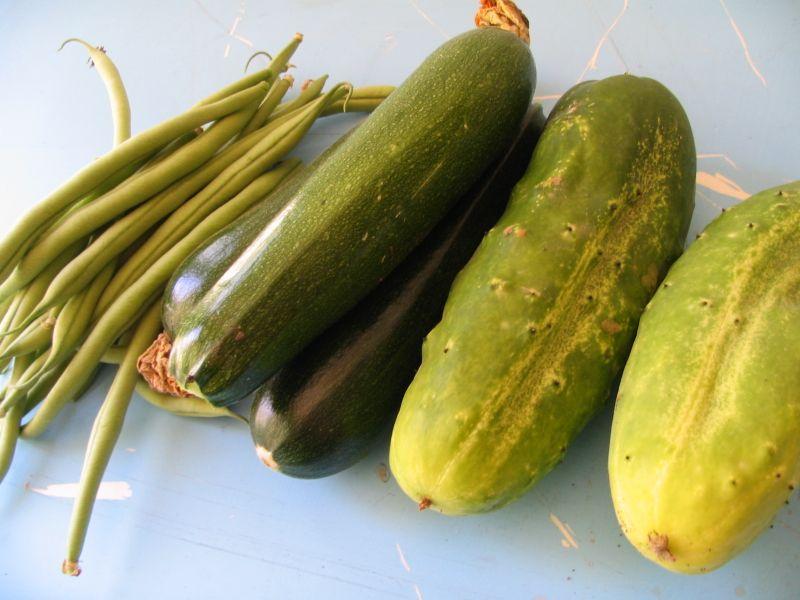 Beans, Zuchinni, Cucumbers, 2