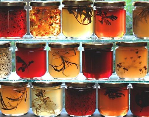 Tangled jellies