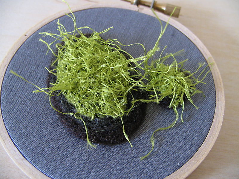 Moss for your Wall 1, 1