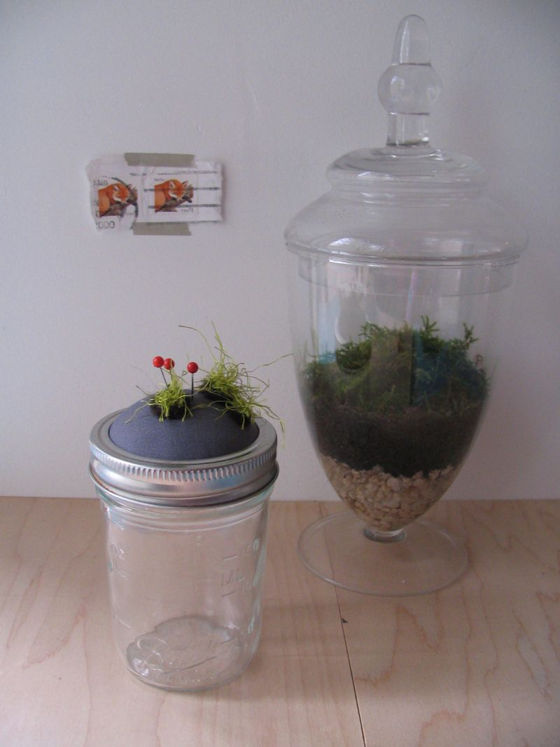 Moss Jar 2, 6