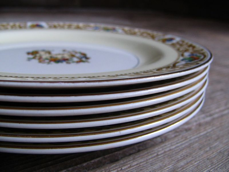 Set of 6 Medium Floral Plates, 1_e